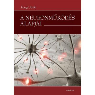 A neuronműködés alapjai