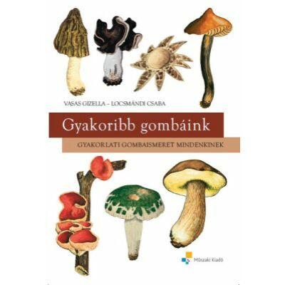 Gyakoribb gombáink