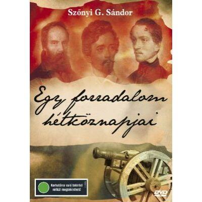 Egy forradalom hétköznapjai (DVD)